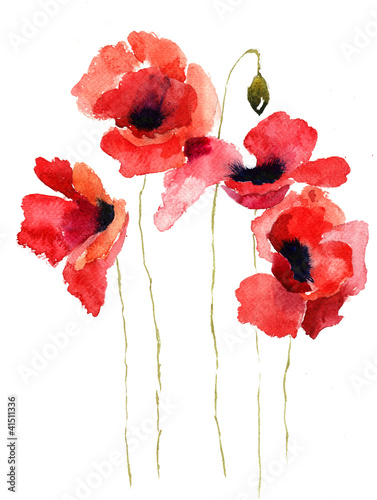 Stylized Poppy flowers illustration © Regina Jersova