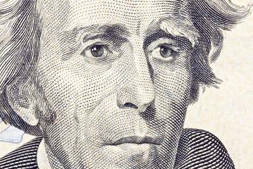 Andrew jackson Macro Close Up US Twenty Dollar Bill