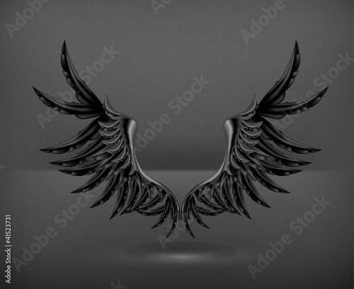 Wings black, vector
