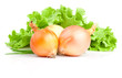 Bulbs of onion, Scallions and Fresh lettuce bunch isolated on a