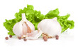 Garlic, pieces,  Allspice and Fresh lettuce bunch isolated on a