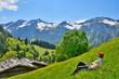 Wanderpause auf Frühlingswiese im Gebirge