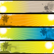 Separated Tropical Banners