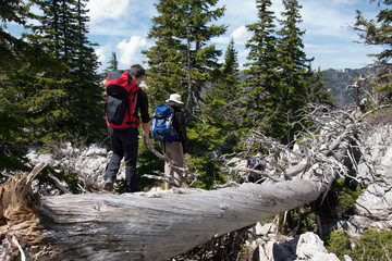 two mountaineers and the old tree trunk