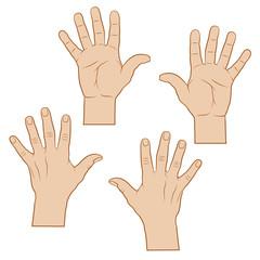 Offene Handflächen, Hände farbig