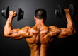 rear view of bodybuilder training with dumbbells