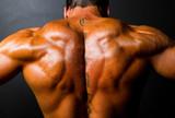 muscular bodybuilder's back on black background
