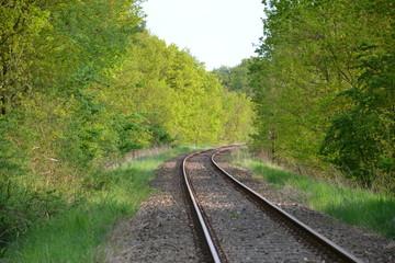 Ein Weg durch die Natur