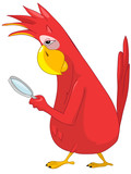 Funny Parrot. Search.