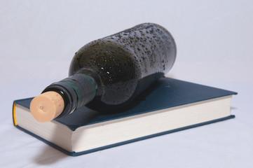 Weinflasche mit Buch