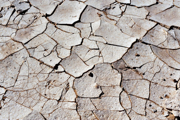 Dry Cracked Earth Texture - Drought