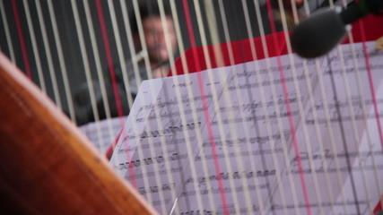 Musician play harp