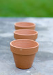 Three terracotta pots