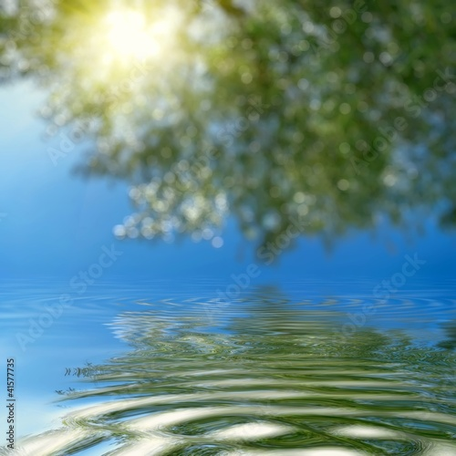 Abstract forest and sun.Reflection in water.