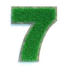 Beautiful Spring Numbers Made of Grass Surrounded with  Border