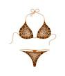 Bikini suit – leopard design