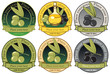 set of labels for olive oils and