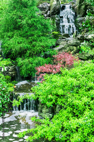 Little beautiful waterfall .Nature Scenery - 41590999