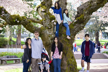 Family of seven by large cherry tree in full bloom