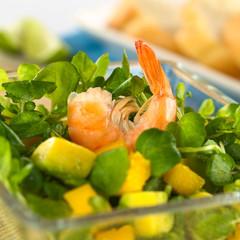 Shrimp on fresh watercress, mango, avocado salad
