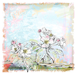 sketch of apple tree in bloom