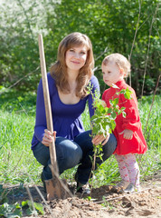 woman with   daughter sets bush