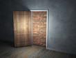 brick wall blocking the doorway