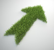 arrow made out of a patch of grass