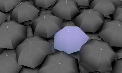 The leader, the best, 3 d, a sea of umbrellas
