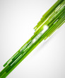 Green straight lines background