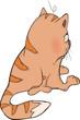 Cat. Cartoon