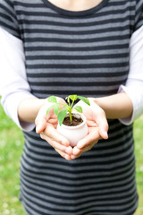 a person holding small plant in the park