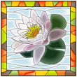 Vector illustration of flower white water lily.