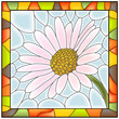 Vector illustration of flower chamomile .