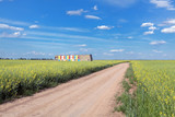 Rural landscape country road, canola field and hives