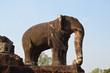 Escultura de elefante en el templo Mebon Oriental. Angkor
