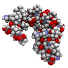 dermcidin-1L molecule