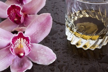 orchid and wisky in wet wenge background