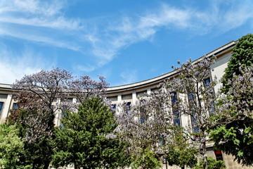 Palais de Chaillot, Trocadero Paris, coté jardin.