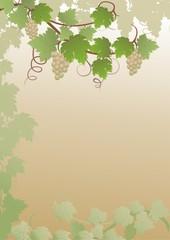Hintergrund mit weissem Wein