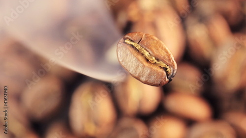 Coffee beans with focus on one
