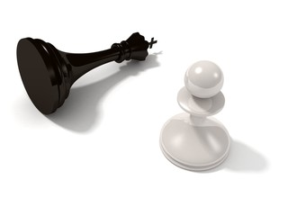 White Chess Pawn and Loser Black King on white background