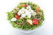insalata mista con feta e pomodori su sfondo bianco