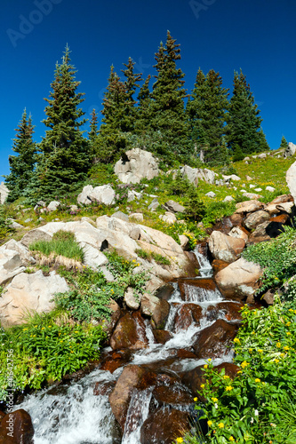 Waterfall and Wildflowers Landscape