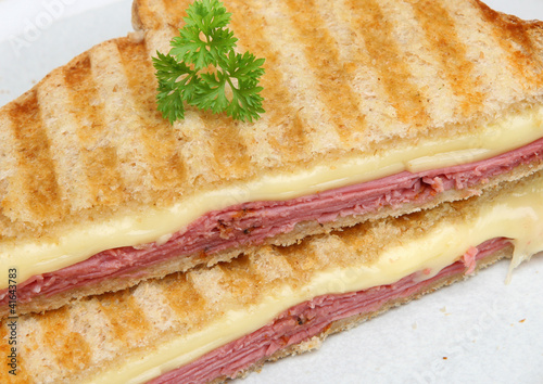 Beef Pastrami & Cheese Toasted Sandwich