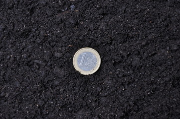 Lucky coin investments in land