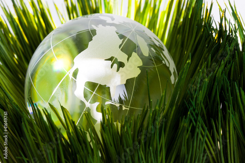 Globe and green grass