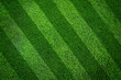 Green grass texture background And oblique lines