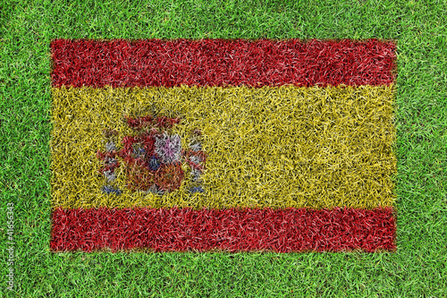 Flag Spain as a painting on green grass