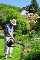 Senior gießt die Gartenblumen